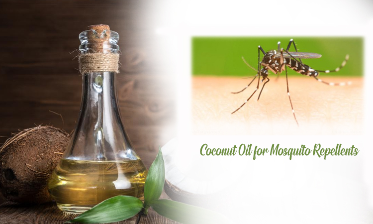 Coconut Oil for Mosquito Repellents